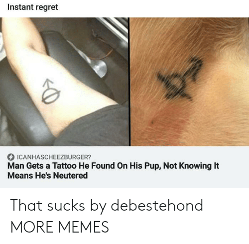 Neutered: Instant regret  ICANHASCHEEZBURGER?  Man Gets a Tattoo He Found On His Pup, Not Knowing It  Means He's Neutered That sucks by debestehond MORE MEMES