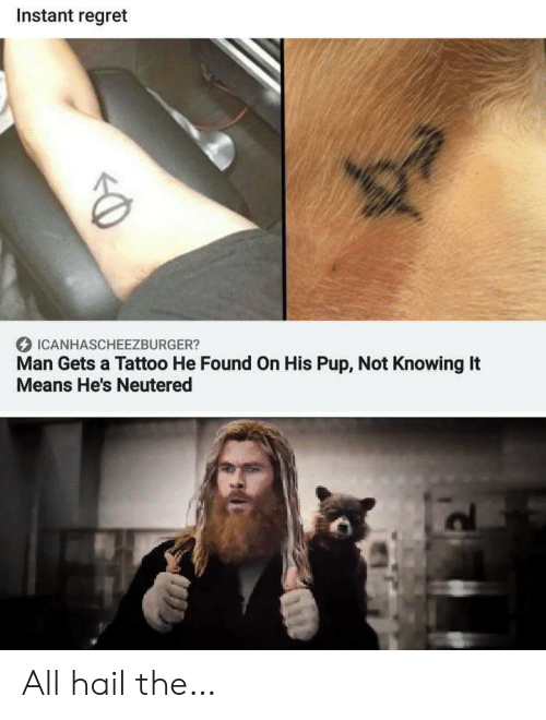 Neutered: Instant regret  ICANHASCHEEZBURGER?  Man Gets a Tattoo He Found On His Pup, Not Knowing It  Means He's Neutered All hail the…