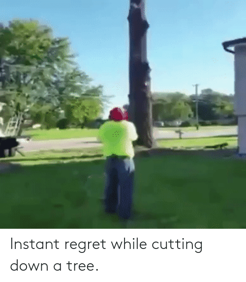 Instant Regret: Instant regret while cutting down a tree.