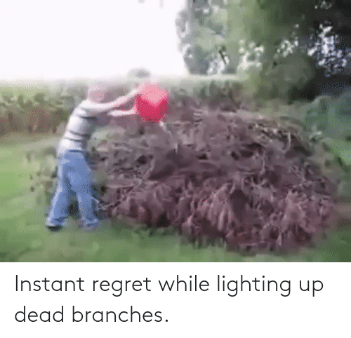 Instant Regret: Instant regret while lighting up dead branches.