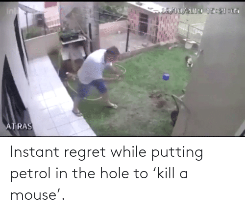 Instant Regret: Instant regret while putting petrol in the hole to 'kill a mouse'.