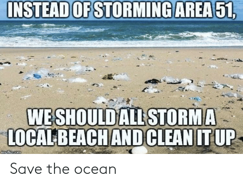 Ocean, Com, and Local: INSTEAD OF STORMING AREA51,  WE SHOULDALL STORMA  LOCAL BEACHANDCLEAN IT UP  imgfip.com Save the ocean