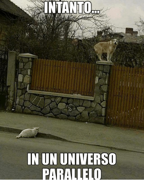 Memes and 🤖: INTANTO  IN UN UNIVERSO  PARALLELO