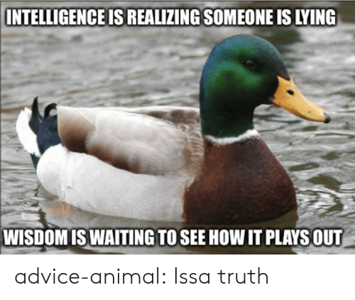 Advice Animal: INTELLIGENCE IS REALIZING SOMEONE IS LYING  WISDOMISWAITING TO SEE HOW IT PLAYSOUT advice-animal:  Issa truth