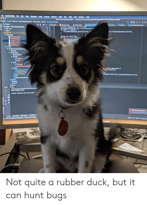 """Party, Run, and Apps: IntelliJ IDEA File Edit View Navigate Code Analyze Refactor Build Run Tools VCS Window Help  ddfs [-/Desktop/Apps/dfs) ...arcjcom/snowypeaksystems/commorut  dd  Dddfe arc com nowypeakaystems) En common utl DistributionU  Project  ddfs /Desktop/Apps/ddfs  Idea  lib  out  output  rifle.png.parity  testFile parity  testFile part O  testFile part1  testFile part  Driverjava x  Synchae  testFie.party  Dist  ifle.png.parlty  /Create FileChannels for all shords  ArrayList FiteChannet fesno Arraist  for (File f:shards)  fcs.add(FileChannel.cpentf.totrnt  Pairae  131  132  133  Standardpendption.  INrite out shard files  for (int 1 fcs.soH  Long pos byte  fetn.t  arc  v D com.anowypeakeya  C client  D common  C Oxceptions  a files  FileOblct  Folder  IOLogger  ORandomAccesFileW  ya util  DistributionUtlls  StringSanitizer  LoggerWrappor  Pair  SynchronizedQueu  nthrovs 10Exception  ady exists!"""")  enOption.CREATE NEW  anet  D server  DDFS  Driver  Run  Library/Java/JavaVirtualMachines/  Tine elapsed: 91ms  Run:  Process finished with exit code  DE Eror Occurred  Data ond m  Statistic  Terminal  TODO  Run  290L UT 4c  DBdid completed successhuilly In 1s 710 ms (4 minutes ago)  Stat  2017  ly of Champions Not quite a rubber duck, but it can hunt bugs"""