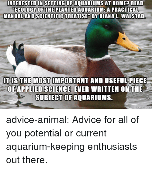 """Advice, Tumblr, and Animal: INTERESTED IN SETTING UP AQUARIUMS AT HOME? READ  ECOLOGY OFTHE PLANTED AQUARIUM: A PRACTICAL  MANUAL AND SCIENTIFIC TREATISE"""" BY DIANA L. WALSTAD  IT IS THE MOST IMPORTANT AND USEFUL PIECE  OF APPLIED SCIENCE EVER WRITTEN ONTHE  SUBJECT OF AQUARI MS. advice-animal:  Advice for all of you potential or current aquarium-keeping enthusiasts out there."""