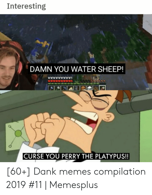 curse: Interesting  DAMN YOU WATER SHEEP!  www  32  CURSE YOU PERRY THE PLATYPUS!! [60+] Dank memes compilation 2019 #11 | Memesplus