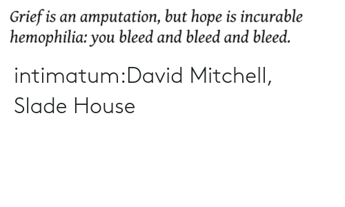 David: intimatum:David Mitchell, Slade House