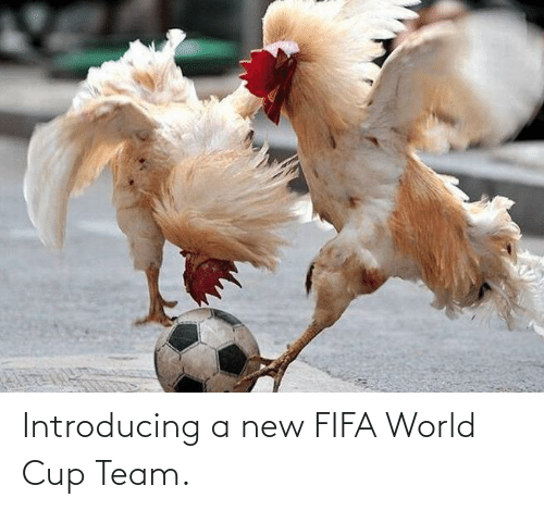 World Cup: Introducing a new FIFA World Cup Team.