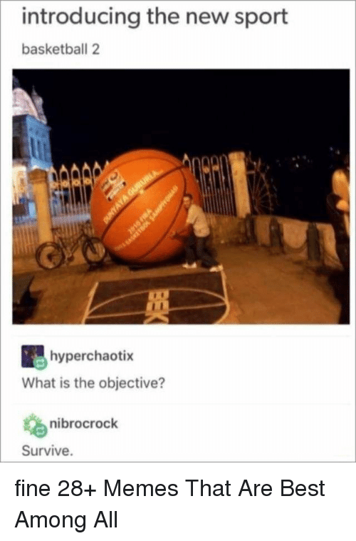 Basketball, Memes, and Best: introducing the new sport  basketball 2  hyperchaotix  What is the objective?  nibrocrock  Survive. fine 28+ Memes That Are Best Among All