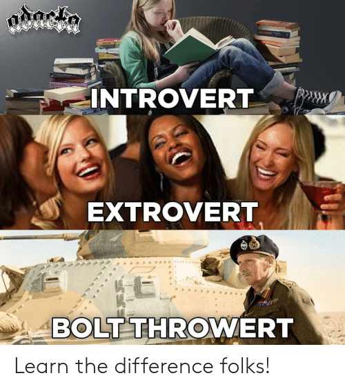Introvert, Metal, and Bolt: INTROVERT  EXTROVERT  BOLT THROWERT Learn the difference folks!