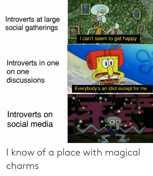 Social media: Introverts at large  social gatherings  I can't seem to get happy  Introverts in one  on one  discussions  Everybody's an idiot except for me  Introverts on  social media I know of a place with magical charms
