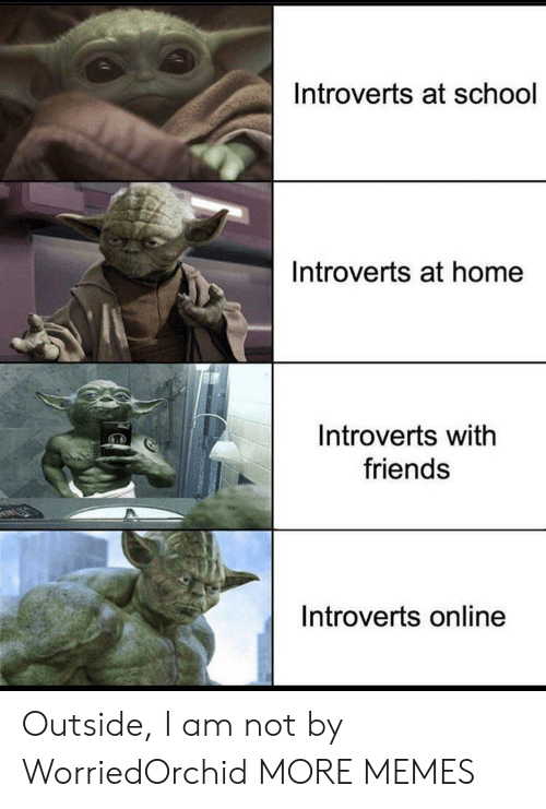 I Am Not: Introverts at school  Introverts at home  Introverts with  friends  Introverts online Outside, I am not by WorriedOrchid MORE MEMES