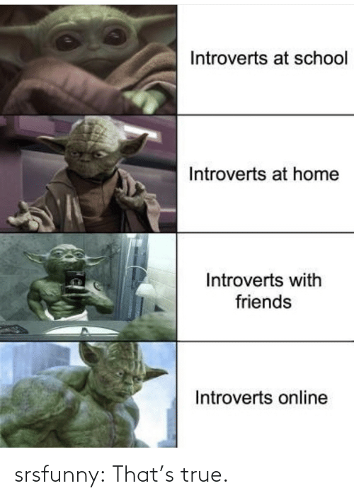 Friends, School, and True: Introverts at school  Introverts at home  Introverts with  friends  Introverts online srsfunny:  That's true.
