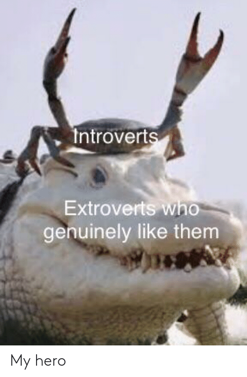 My Hero: Introverts  Extroverts who  genuinely like them My hero