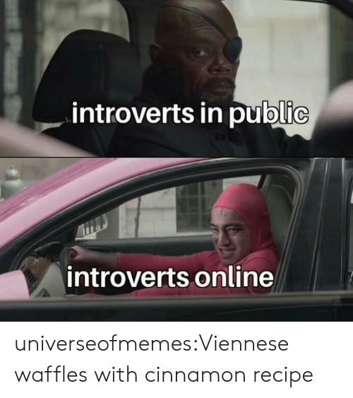 Tumblr, Blog, and Com: introverts in public  introverts online  PzS universeofmemes:Viennese waffles with cinnamonrecipe