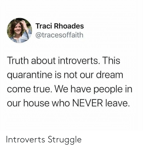 introverts: Introverts Struggle