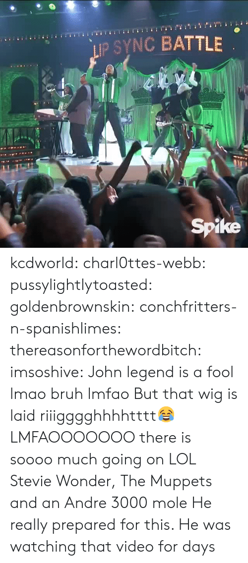 Andre 3000: IP SYNC BATTLE  Spike kcdworld:  charl0ttes-webb:   pussylightlytoasted:  goldenbrownskin:  conchfritters-n-spanishlimes:   thereasonforthewordbitch:  imsoshive:  John legend is a fool lmao  bruh lmfao  But that wig is laid riiigggghhhhtttt😂   LMFAOOOOOOO  there is soooo much going on   LOL Stevie Wonder, The Muppets and an Andre 3000 mole    He really prepared for this. He was watching that video for days