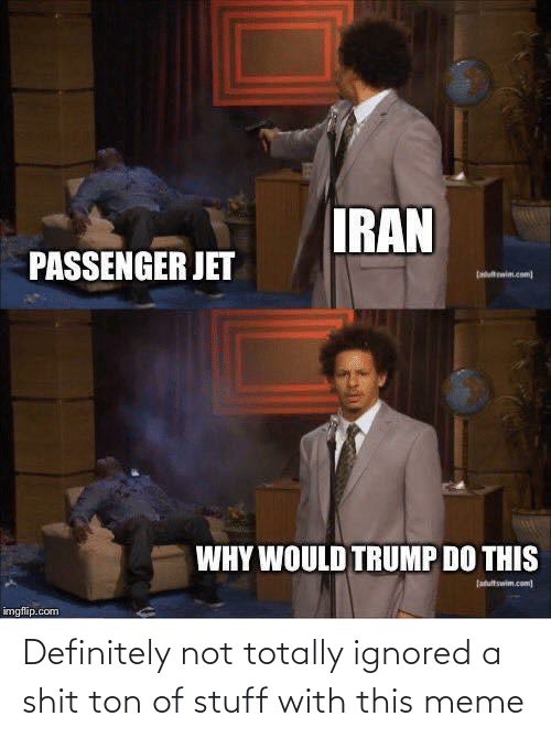 Imgflip Com: IRAN  PASSENGER JET  ltwim.com  WHY WOULD TRUMP DO THIS  fatultswim.com  imgflip.com Definitely not totally ignored a shit ton of stuff with this meme