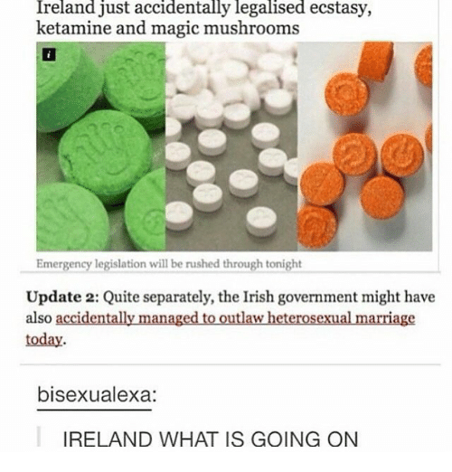 Irish, Marriage, and Ireland: Ireland just accidentally legalised ecstasy,  ketamine and magic mushrooms  Emergency legislation will be rushed through tonight  Update 2: Quite separately, the Irish government might have  also accidentally managed to outlaw heterosexual marriage  today  bisexualexa:  IRELAND WHAT IS GOING ON