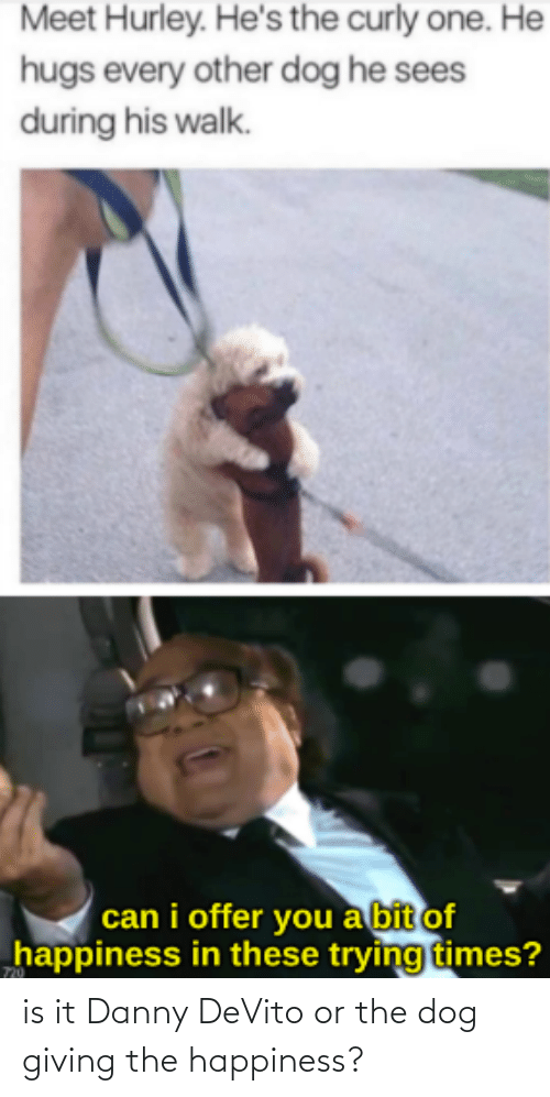 Giving: is it Danny DeVito or the dog giving the happiness?