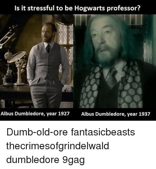 9gag, Dumb, and Dumbledore: Is it stressful to be Hogwarts professor?  Albus Dumbledore, year 1927  Albus Dumbledore, year 1937 Dumb-old-ore⠀ fantasicbeasts thecrimesofgrindelwald dumbledore 9gag