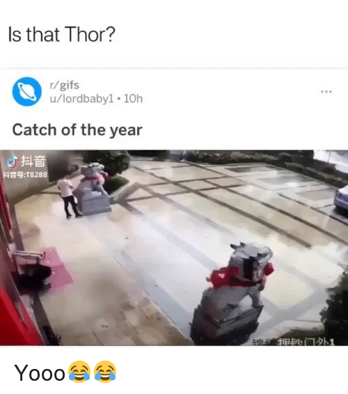 Funny, Gifs, and Thor: Is that Thor?  r/gifs  u/lordbaby1 10h  Catch of the year  よ抖音  音号:T8288  畑訫门外! Yooo😂😂