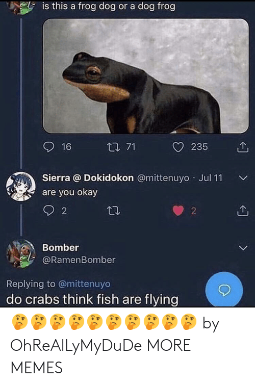 sierra: is this a frog dog or a dog frog  16  t 71  O 235 1  Sierra @ Dokidokon @mittenuyo Jul 11  are you okay  2  2  Bomber  @RamenBomber  Replying to @mittenuyo  do crabs think fish are flying 🤔🤔🤔🤔🤔🤔🤔🤔🤔🤔 by OhReAlLyMyDuDe MORE MEMES