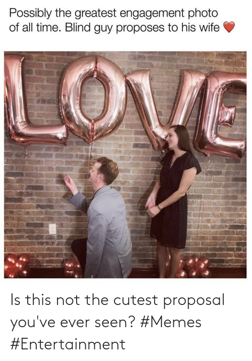 Not The: Is this not the cutest proposal you've ever seen? #Memes #Entertainment
