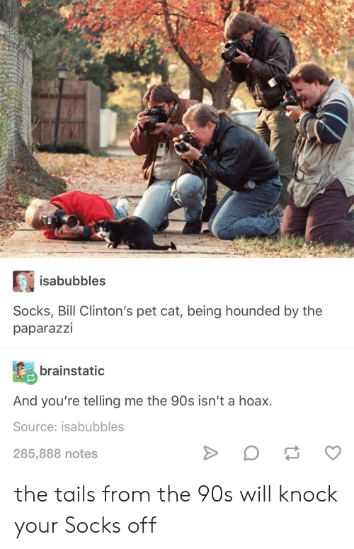 Telling Me: isabubbles  Socks, Bill Clinton's pet cat, being hounded by the  paparazzi  brainstatic  And you're telling me the 90s isn't a hoax.  Source: isabubbles  285,888 notes the tails from the 90s will knock your Socks off