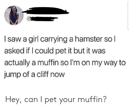 Girl, Hamster, and On My Way: Isaw a girl carrying a hamster so l  asked if I could pet it but it was  actually a muffin so I'm on my way to  jump of a cliff now Hey, can I pet your muffin?