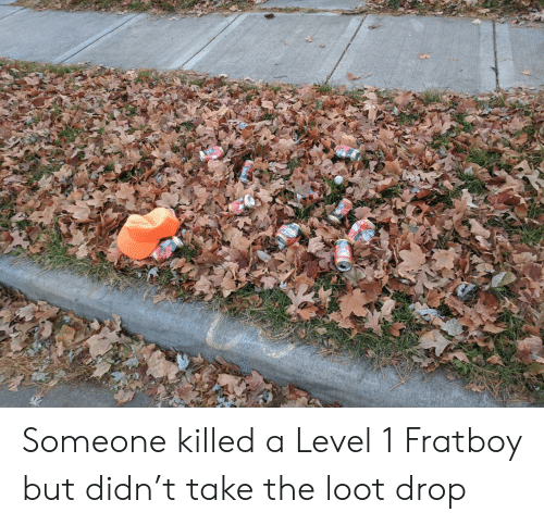 Level, A Level, and Drop: isCH Someone killed a Level 1 Fratboy but didn't take the loot drop