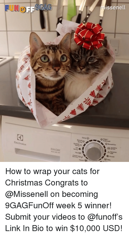 Cats, Christmas, and Memes: issenell  UNOFF  OFF  Electrolux  DUALCARE How to wrap your cats for Christmas Congrats to @Missenell on becoming 9GAGFunOff week 5 winner! Submit your videos to @funoff's Link In Bio to win $10,000 USD!