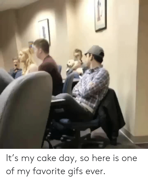 Gifs: It's my cake day, so here is one of my favorite gifs ever.
