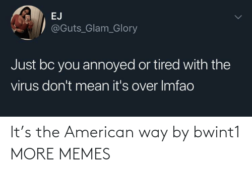 American: It's the American way by bwint1 MORE MEMES