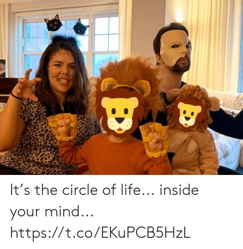 circle: It's the circle of life... inside your mind... https://t.co/EKuPCB5HzL
