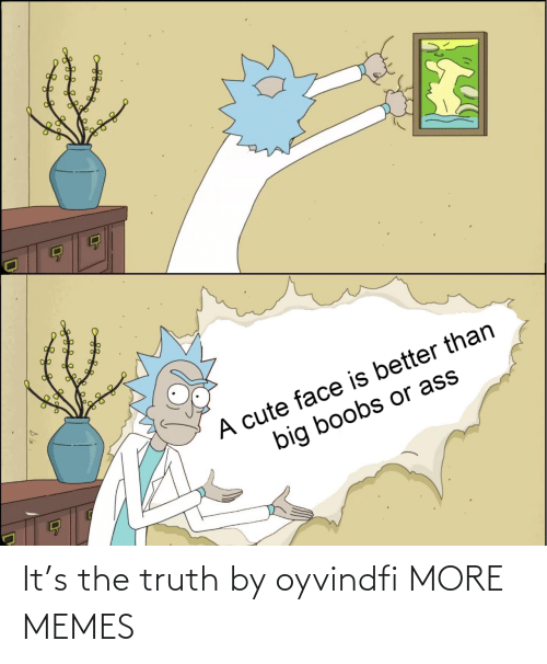 Truth: It's the truth by oyvindfi MORE MEMES