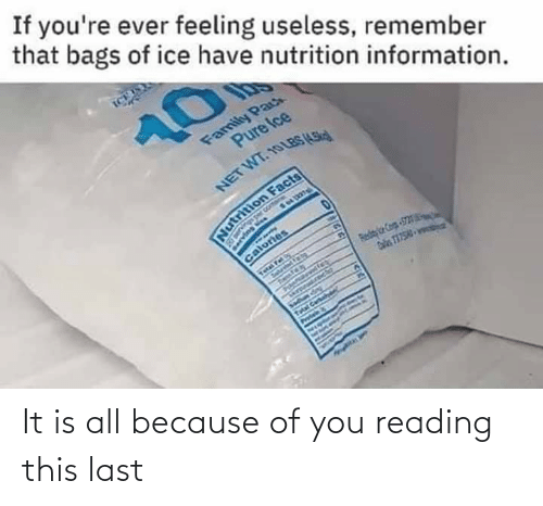 Because Of: It is all because of you reading this last