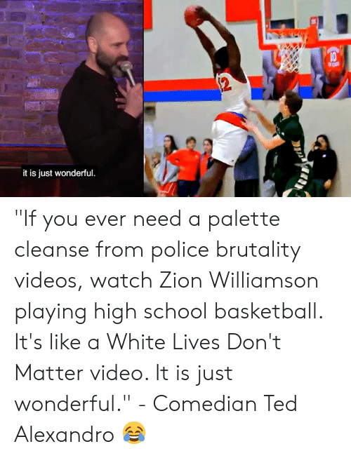"Basketball, Memes, and Police: it is just wonderful ""If you ever need a palette cleanse from police brutality videos, watch Zion Williamson playing high school basketball. It's like a White Lives Don't Matter video. It is just wonderful.""   - Comedian Ted Alexandro 😂"