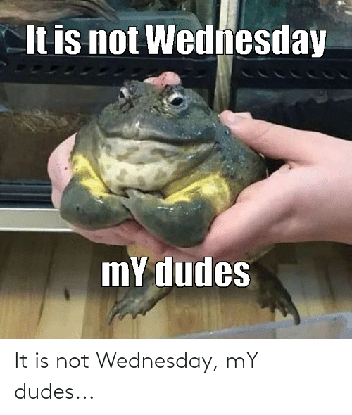 Wednesday: It is not Wednesday, mY dudes...
