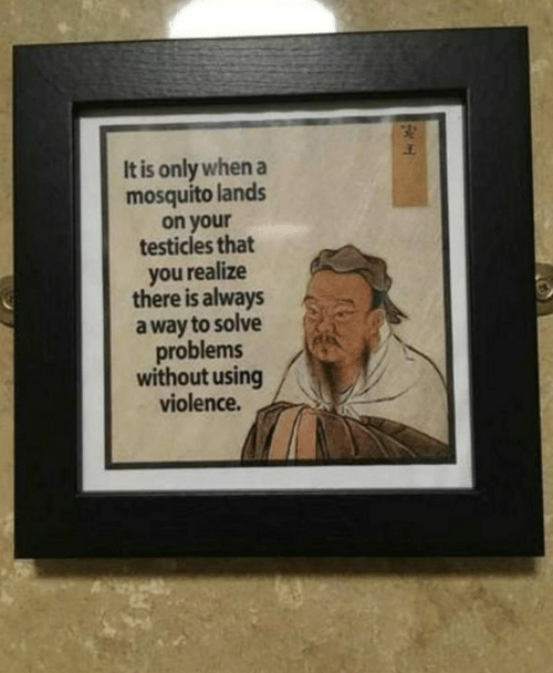 Mosquito, You, and Testicles: It is only when a  mosquito lands  on your  testicles that  you realize  there is always  a way to solve  problems  without using  violence.