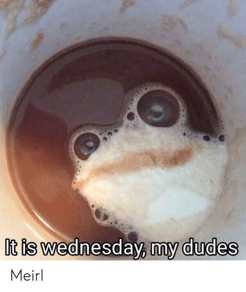 Wednesday, MeIRL, and It Is Wednesday My Dudes: It is wednesday, my dudes Meirl