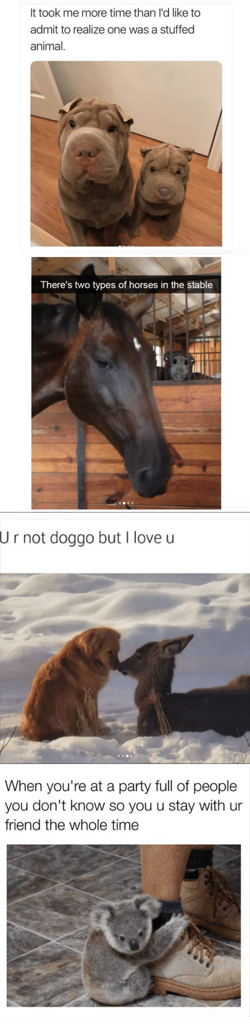 Horses, Love, and Party: It took me more time than l'd like to  admit to realize one was a stuffed  animal.   There's two types of horses in the stable   U  r not doggo but I love u   When you're at a party full of people  you don't know so you u stay with ur  friend the whole time