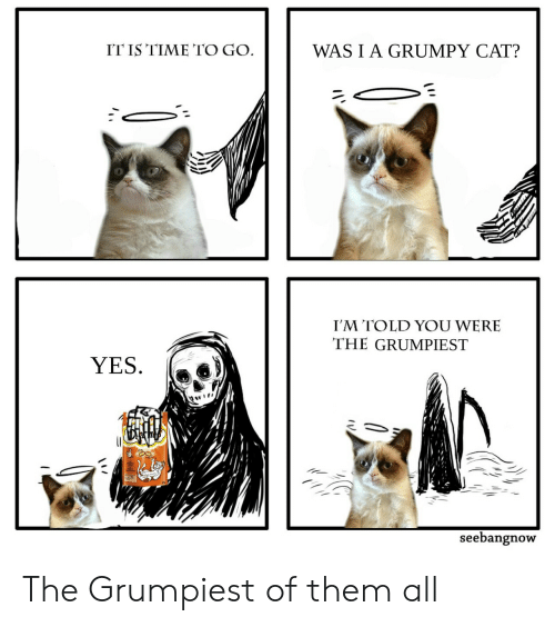 Grumpy Cat: ITIS TIME TO GO  WASIA GRUMPY CAT?  I'M TOLD YOU WERE  THE GRUMPIEST  YES.  seebangnow The Grumpiest of them all