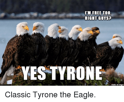 the eagle: ITM FREE TOO  RIGHT GUYS?  YES TYRONE  made on imgur Classic Tyrone the Eagle.