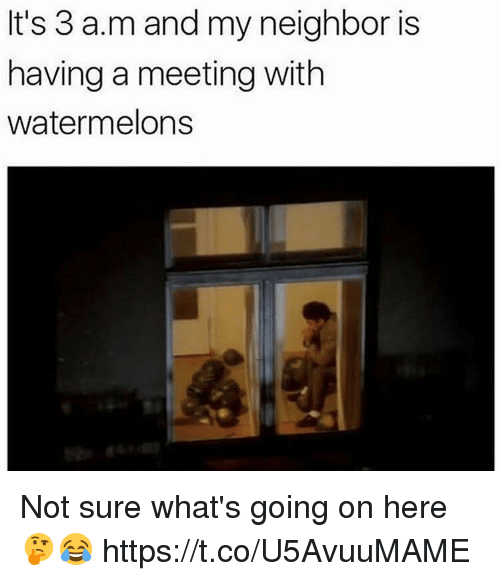 Memes, Neighbors, and 🤖: It's 3 a.m and my neighbor is  having a meeting with  watermelons Not sure what's going on here 🤔😂 https://t.co/U5AvuuMAME