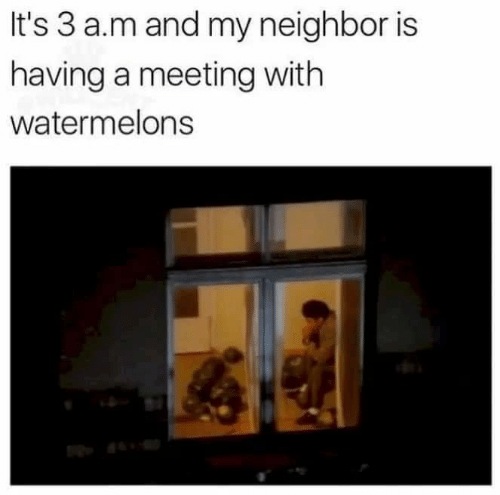 A&m,  Meeting, and  Neighbor: It's 3 a.m and my neighbor is  having a meeting with  watermelons