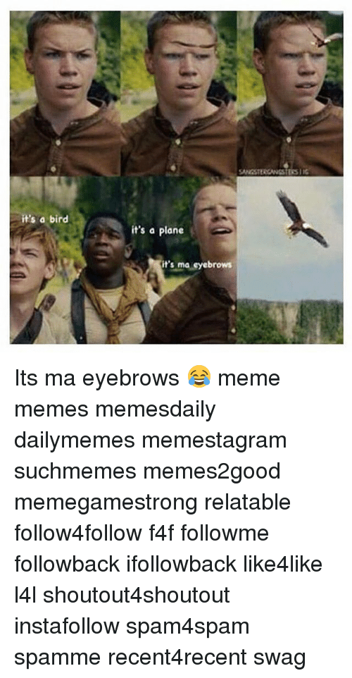Eyebrows Meme