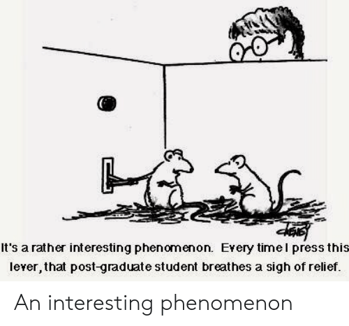 relief: It's a rather interesting phenomenon. Every timel press this  lever, that post-graduate student breathes a sigh of relief. An interesting phenomenon