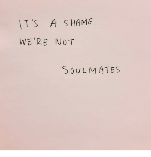 Soulmates, Were, and Its A: IT's A S HAME  WE'RE NOT  SOuLMATES